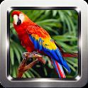 Parrot Bird Sounds icon