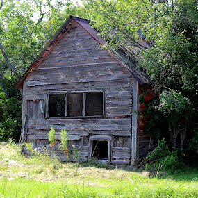 Tiny house by Janet Smothers - Buildings & Architecture Decaying & Abandoned