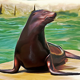 Bathing Beauty by Jerry Ehlers - Digital Art Animals ( seal )