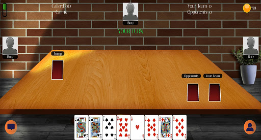 29 Card Game 5.8 screenshots 9