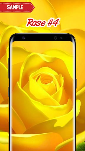Rose Wallpaper  screenshots 21