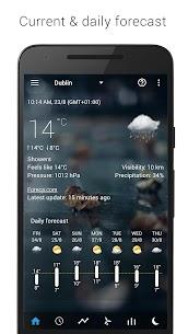 Transparent clock weather Premium 10