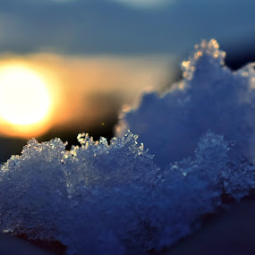 snow by Ira Mdt - Abstract Macro ( #snow #sunset #macro #lignt,  )
