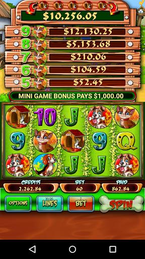 Cats Dogs Free Slot Machine