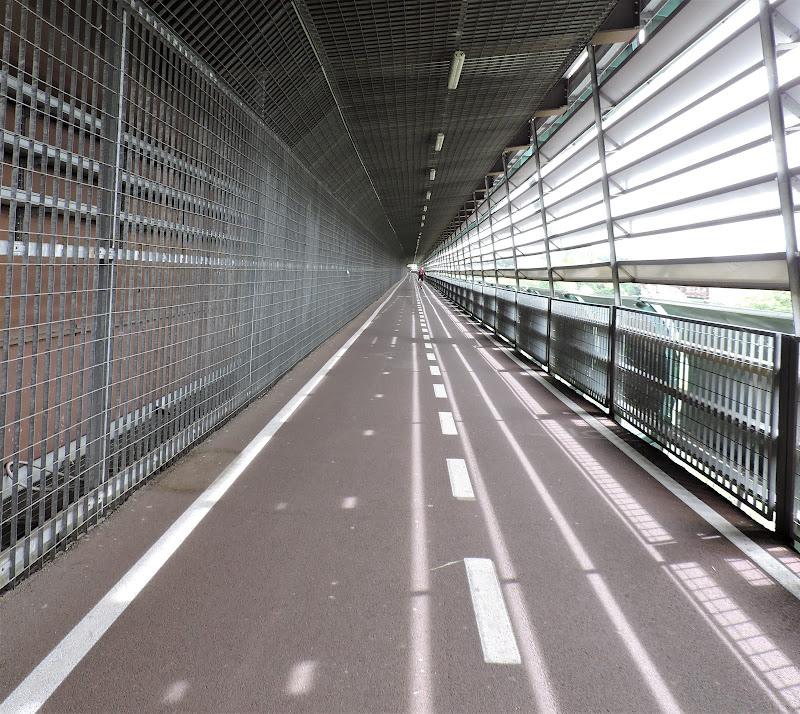 Ponte ciclabile sul Tevere di sara_fianchini