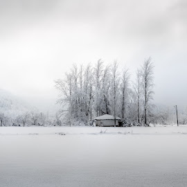 frozen lake by Murat Besbudak - Landscapes Prairies, Meadows & Fields