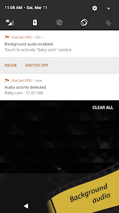 tinyCam PRO (SALE!) - Swiss knife to monitor cam Screenshot