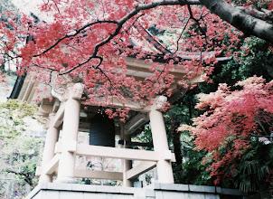Photo: 秋の乗誓寺