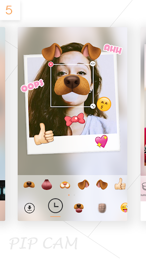 PIP CAM - Photo Maker for PC