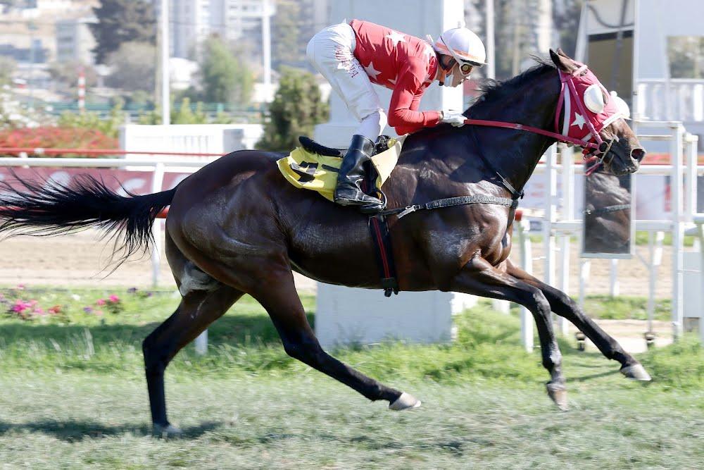 Maluma (Aragorn) se lleva  Handicap (1000m-Pasto-VSC).