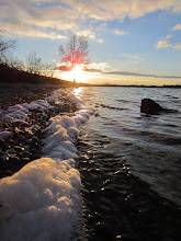 Photo: Foam on a lake at sunset behind a tree at Eastwood Park in Dayton, Ohio.