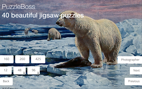Jigsaw Puzzles: Arctic- screenshot thumbnail