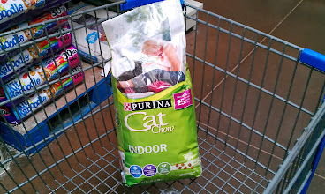 Photo: Let's not forget the furry members of the family. Time to pick up another bag of cat food.