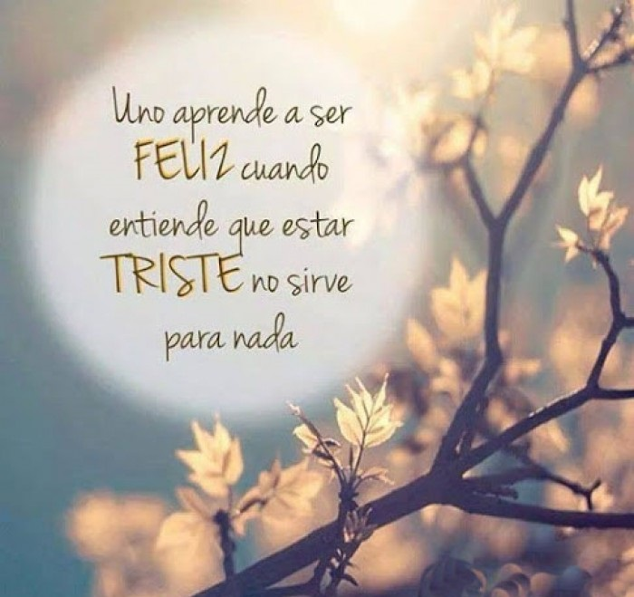Frases Celebres Con Paisajes Android App Appagg