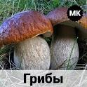 Грибы. Справочник - более 900 видов грибов icon