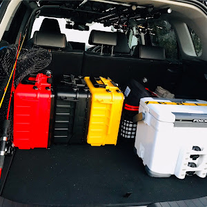 RAV4 ACA31W 2019のカスタム事例画像 スルメなぅさんの2020年04月08日17:39の投稿