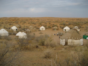 Photo: Yurt camp
