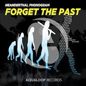 Forget the Past (Pulsedriver Edit)