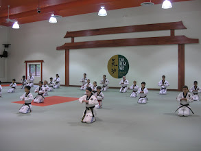 Photo: Darimar Martial Arts 2014 U.S. Tigers Demo