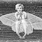 marl moth_pe 2.jpg