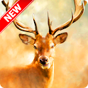 Beautiful Deer Wallpaper icon