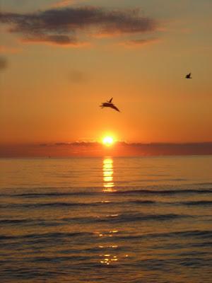Sopra il sole.. di loka90