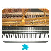 Electric Grand Piano *Plugin*