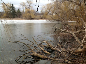 Photo: Pierce Lake with some lingering winter ice