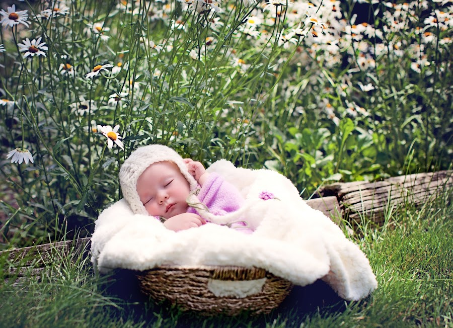 by ILOVE Photography - Babies & Children Babies