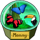 Download Memmy - A memory game For PC Windows and Mac