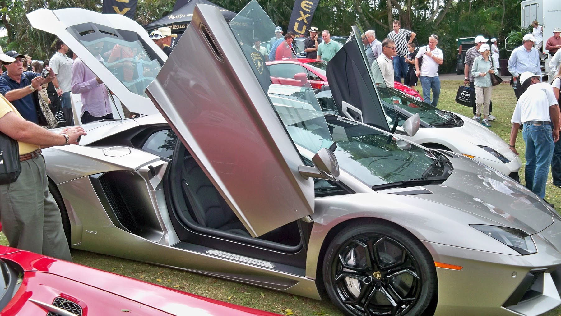 tips year read elephant best insurance a this lamborghini car for will you