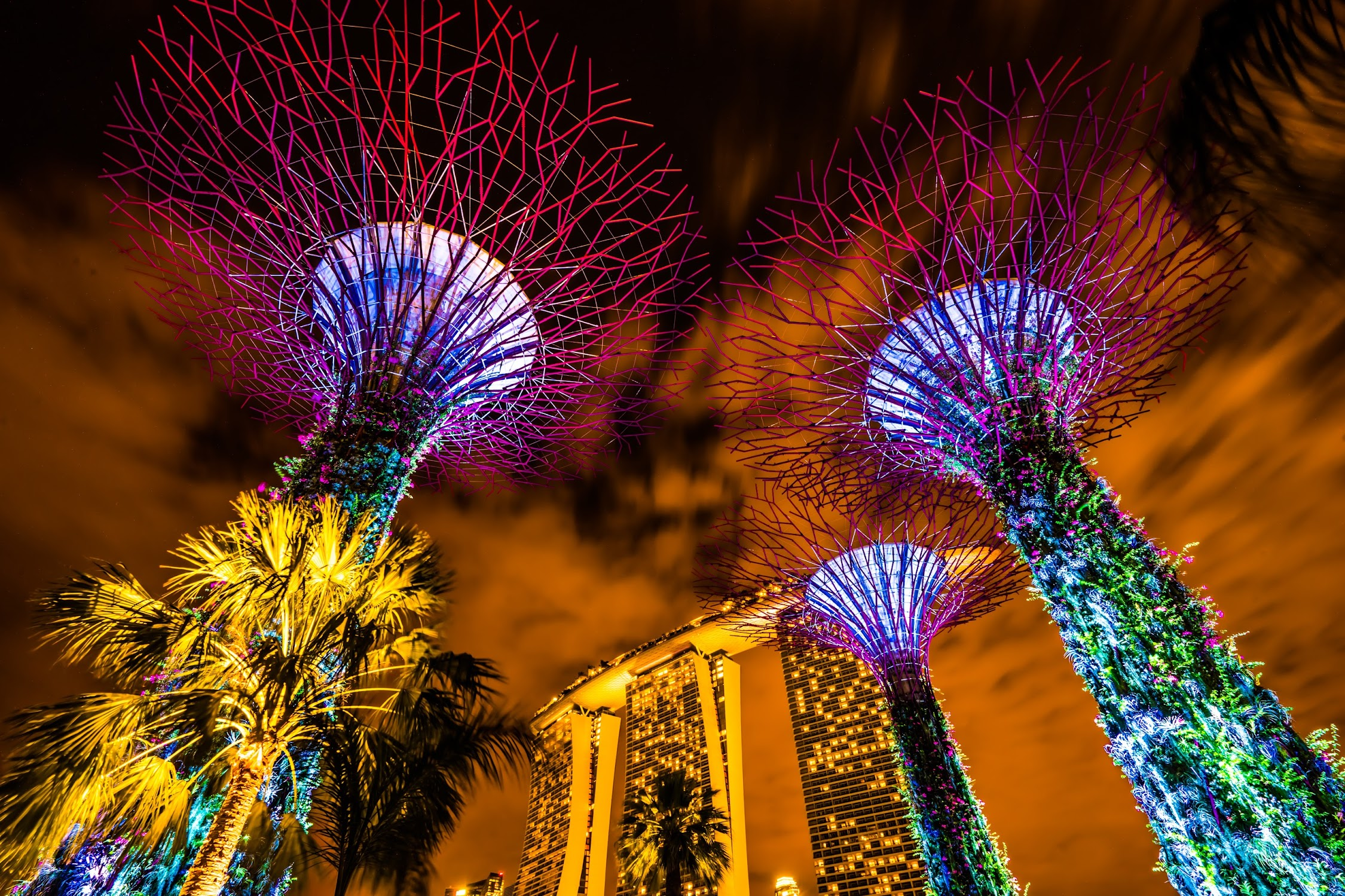 Gardens by the Bay Silver Garden night view