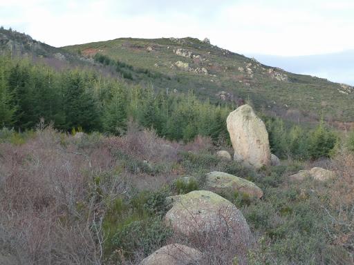 Roca Gelera