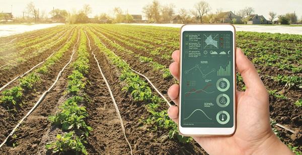 Ứng dụng IoT trong nông nghiệp thông minh như thế nào?