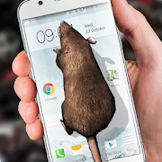 Mouse on Screen Scary Joke