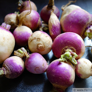 Silken Turnip and Potato Soup (and How To Make Chicken Stock).