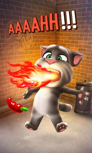 Talking Tom Cat - screenshot