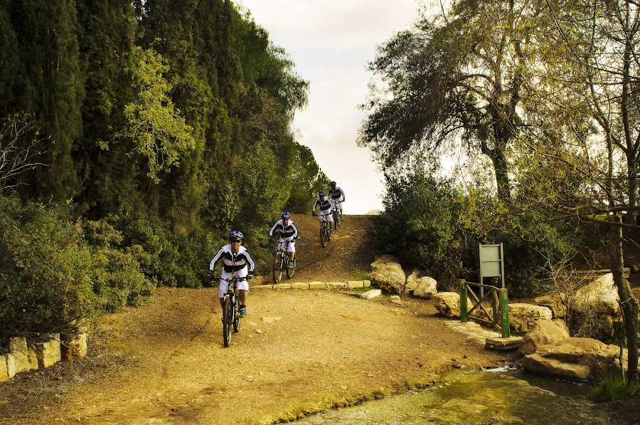 multiple me by Ruel Alcain - Sports & Fitness Cycling ( downhill, ruel alcain, bicycle )