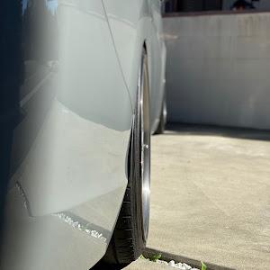 ステップワゴン  RP-1のカスタム事例画像 おがっぷさんの2020年11月23日21:49の投稿
