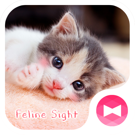 Cute Wallpaper Feline Sight Theme Icon
