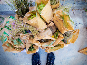 Photo: Taller de ratafia amb la confraria de la ratafia, Sant Coloma de Farners