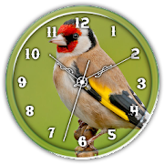 American Gold Finch Clock LWP