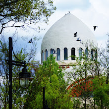 Photo: Birds in flight cross the cupola of the elephant house