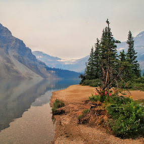 Bow Lake by Margie Troyer - Landscapes Waterscapes (  )