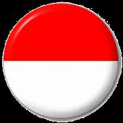 App VPN Indonesia - Free•Unblock•Proxy apk for kindle fire