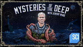 Mysteries of the Deep thumbnail