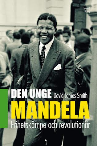 Den unge Mandela E-bok