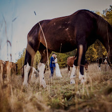 Wedding photographer Anna i piotr Dziwak (fotodziwaki). Photo of 04.01.2016