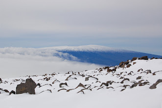 Photo: Mauna Loa looms in the distance. It's as high as Mauna Kea minus about 100 ft.