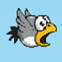 Fap Bird icon